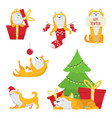 character design in cartoon style yellow dog vector image vector image