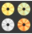 Circular Saw Discs vector image
