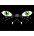 Face of black cat with green eyes vector image vector image