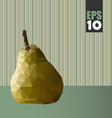 geometric pear with textures vector image