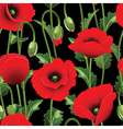 Poppies and green leaves vector | Price: 1 Credit (USD $1)