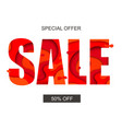 sale banner with special offer vector image vector image