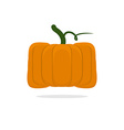 Square pumpkin Unusual Vegetable for Halloween vector image vector image
