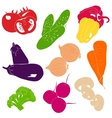 Vegetables Collection vector image