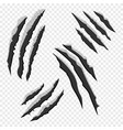 claws scratches isolated on transparent background vector image vector image