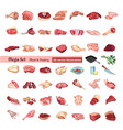 colored poultry and meat elements set vector image