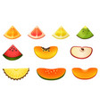 fruit slices or pieces of fruit vector image