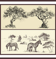 nature banners set trees arch and savanna vector image