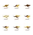 set of kangaroo logo design template kangaroo vector image