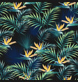 tropical leaves and paradise strelitzia flowers vector image vector image