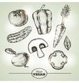 vintage hand drawing sketch set vegetables vector image