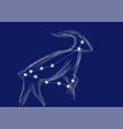 zodiac sign-capricorn vector image vector image