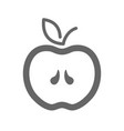 apple outline icon apple fruit sign vector image