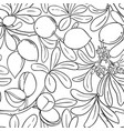 argan branches pattern on white background vector image vector image