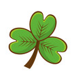 clover plant decoration design vector image