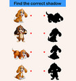 find correct shadow funny little dog collections vector image