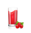 juice with red currants in a glass realistic vector image vector image