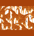 seamless pattern with of giraffes vector image vector image