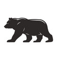 vintage walking bear silhouette concept vector image vector image
