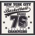 Basketball champion t-shirt vector image vector image