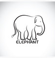 elephant on white background wild animal vector image vector image