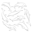 hand drawn set of dolphins vector image vector image
