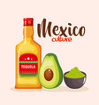 mexican tequila and guacamole sauce vector image vector image