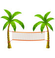 Volleyball net on coconut trees