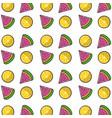 wotermelon slice and lemon background design vector image