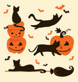 halloween cats and pumpkins trick or treat card vector image