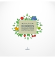 Banner with fresh berries Concept organic food vector image vector image