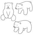 set of polar bear vector image vector image