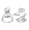 sugar stored in burlap bag and wooden bowl with vector image