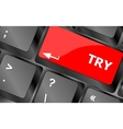 try button on keyboard key vector image