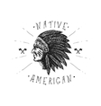 Face of indian chief vector image