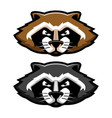 angry raccoon head logo mascot in cartoon style vector image