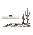 cacti in arizona vector image vector image