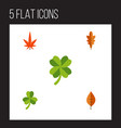 flat icon leaf set of leaf foliage linden and vector image vector image