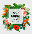 Hot summer sale background with exotic leaves and vector image