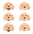 labrador retriever emoticons vector image vector image