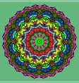 ornament a circular mandala color vector image