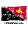papua new guinea flags design vector image
