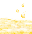 Abstract Background with Sweet Honey Drips vector image