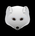 arctic fox portrait head predatory animal of the vector image
