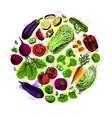 circle vegetables watercolor set vector image