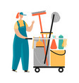 cleaning service image vector image
