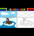 coloring book with walrus cartoon vector image vector image