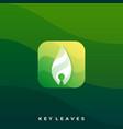 digital media icon leaf key colorful design vector image vector image