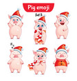 set of christmas pig characters set 5 vector image vector image