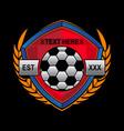 simple soccer logo vector image
